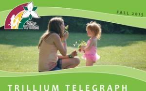 Fall-Newsletter-2013-300x188